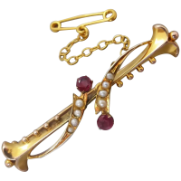 antique-edwardian-9ct-gold-natural-ruby-and_pearl-brooch Beryl Lane - Brooches & Pins
