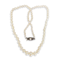 vintage-cultured-akoya-pearl-strand_911202849 Beryl Lane - SOLD
